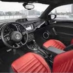 Interior Beetle