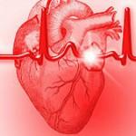 ¿Cómo sigue latiendo el corazón?