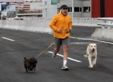 Salir a correr con tu mascota es benéfico para ambos.
