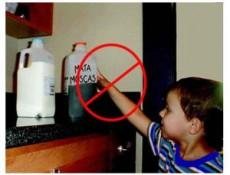 Un lavado gástrico es efectivo pero debe hacerse en los 30 min posteriores.
