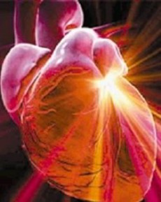 El corazón late más rápido, bombea más sangre y se esfuerza más.