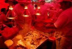 El taco es el platillo más famoso del sistema culinario de este país.