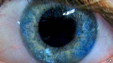 ¿Por qué los ojos son de colores?