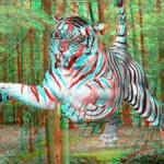 ¿Se acostumbra el cerebro a la tercera dimensión de las películas en 3D?