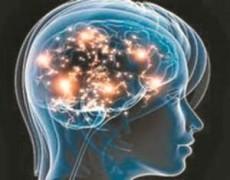 Sí, hay cerebros femeninos y masculinos pero no interfiere en la identidad sexual de las personas.