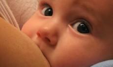 El calostro contiene lactobacilos y bifidobacterias que ayudan a los niños de cesárea.